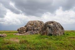 Serengeti, Tanzanie photo stock
