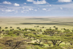 Serengeti. The vast plains of the Serengeti, Tanzania, Africa royalty free stock photo