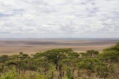 Serengetiuitzicht Stock Foto's