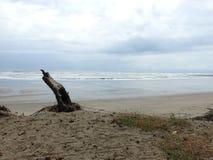 Serenidad en la playa, Playa Esterillos Costa Rica Fotografía de archivo libre de regalías
