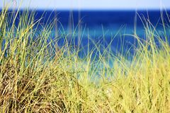 Serenidade Imagem de Stock Royalty Free
