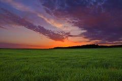 Serenidade da natureza Fotografia de Stock Royalty Free