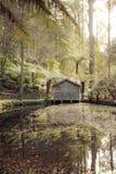 Serenidade do estaleiro Fotos de Stock