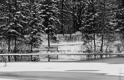 A serenidade do inverno Foto de Stock