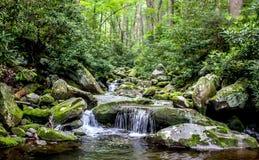 Serenidade e fluxo Fotografia de Stock Royalty Free
