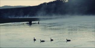Sereniteit! Royalty-vrije Stock Foto's