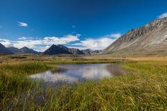 Sereniteitsmeer in toendra op Alaska Stock Fotografie