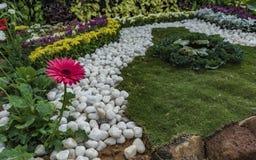 Serenitet: Hem- trädgård - vita kiselstenar, gräsmatta och röd tusenskönablomma royaltyfria foton
