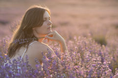 Serenitet och lavendel royaltyfria bilder