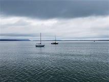 Serenitet på Puget Sound royaltyfria foton