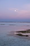 Serenity. Evening East view of the Paradise Island (the Male Atoll, Maldives Royalty Free Stock Images