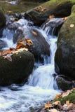 serenity Royaltyfria Bilder