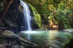 Free Serenity Falls At Buderim Rainforest Park Royalty Free Stock Photos - 128500778