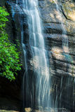 Serenity Falls. In Buderim, Sunshine Coast, Australia. Located in the Buderim Forest waterfall walk Stock Images