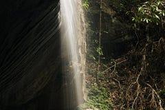 Serenity Falls in Buderim. Serenity Falls in Buderim, Sunshine Coast, Australia. Located in the Buderim Forest waterfall walk Stock Photography