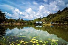 Serenity lake Arkivbilder