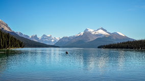 Serenity at Lake Maligne, Alberta, Canada royalty free stock photography