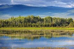 Lake on Alaska. Serenity lake in tundra in Alaska stock photography