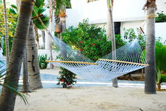 Serenity in Mexico. Beautiful garden at resort in Cabo San Lucas, Mexico with palm trees and sand, hammock hanging for visitiors on sunny day Stock Photo