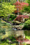 Serenity Pool. Beautiful garden has serenity pool guarded by a leafy Japanese Maple.  Glassy surface has gentle ripples from the waterfall and the reflection of Stock Photo