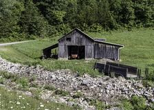 Serenity in a rural area with a wooden barn. A tranquil landscape of a old wooden barn in a rural setting stock images