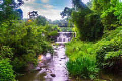 Serenity. Tiny but beautiful falls hidden away in a shaker heights park in Cleveland Ohio Stock Photos