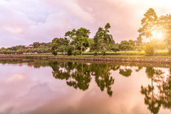 The serenity of the trees and the river, under the setting sun Royalty Free Stock Images