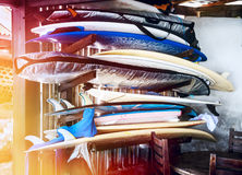 Serfer-Bretter unter Dach für Miete Lizenzfreies Stockfoto