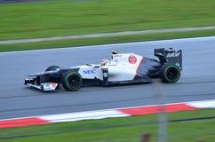 Sergio Perez, squadra Sauber Ferrari Fotografie Stock Libere da Diritti