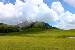Seri Paya Landscape, Pakistan. Stock Photography