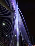 Seri Wawasan桥梁 库存图片