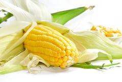 Serie 01 del maíz Imagenes de archivo