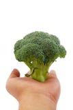 Serie 02 del bróculi Imagen de archivo