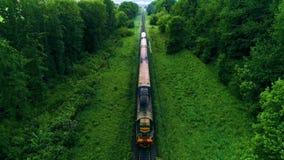 Serie auf Eisenbahnspur Wald auf beiden Seiten Schießenbrummen stock video