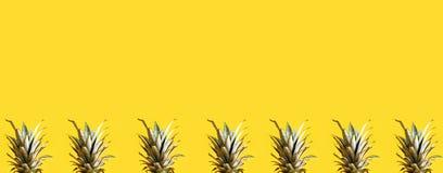 Serie av ananasblast Arkivbild