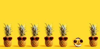 Serie av ananors och bärande solglasögon för en kokosnöt Arkivbild