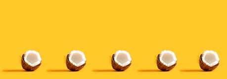 Serie av kokosnötter Royaltyfria Bilder