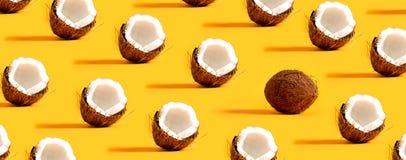 Serie av kokosnötter Arkivfoto