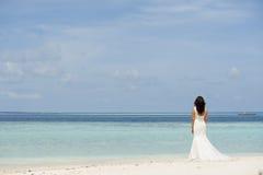 Serie av Maldiverna royaltyfri bild