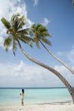 Serie av Maldiverna Arkivbilder