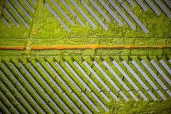 Serie av photovoltaic paneler Royaltyfria Foton