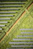 Serie av photovoltaic paneler Royaltyfri Bild
