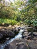 Serie av vattenfall i ström i fjärrkontrollen som fotvandrar område av Kauai Hawaii Royaltyfria Bilder