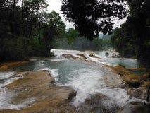 Serie de cascadas en el Agua Azul, México Fotografía de archivo libre de regalías
