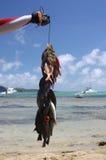 Serie de Isla Mauricio imagenes de archivo