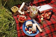 Serie de la comida campestre Imagenes de archivo