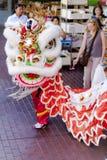 Serie de la danza del dragón Imagen de archivo libre de regalías