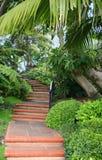 Serie de la escalera Foto de archivo