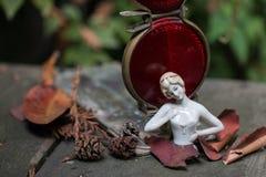Serie de la nostalgia que muestra la muñeca alemana antigua de la porcelana en hojas de otoño fotografía de archivo