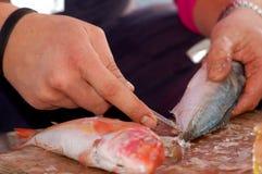 Serie de la pesca - limpieza de un pescado fresco imágenes de archivo libres de regalías